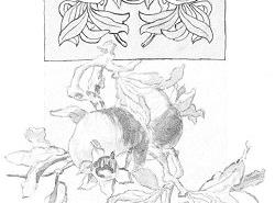 disegno-ornamentale-1938